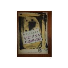 VIZUINA LUMINATA-M.BLECHER