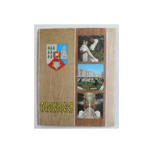 VRANCEA , ALBUM DE PREZENTARE , TEXT IN ROMANA , FRANCEZA , ENGLEZA , RUSA , 1977
