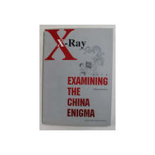X - RAY - EXAMING THE CHINA ENIGMA by RAYMOND ZHOU , 2008 , PREZINTA HALOURI DE APA *