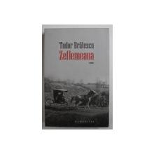 ZEFLEMEAUA  roman de TUDOR BRATESCU , 2016