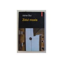ZIDUL MOALE de ADRIAN BUZ , 2005