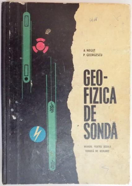 GEOFIZICA DE SONDA EBOOK DOWNLOAD